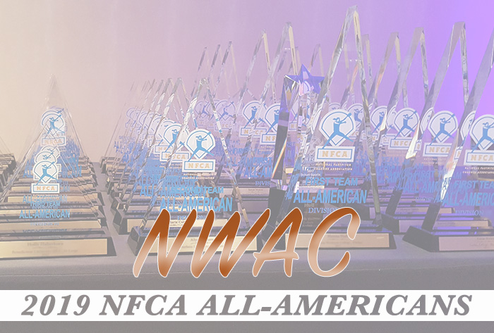NFCA All-American Banner