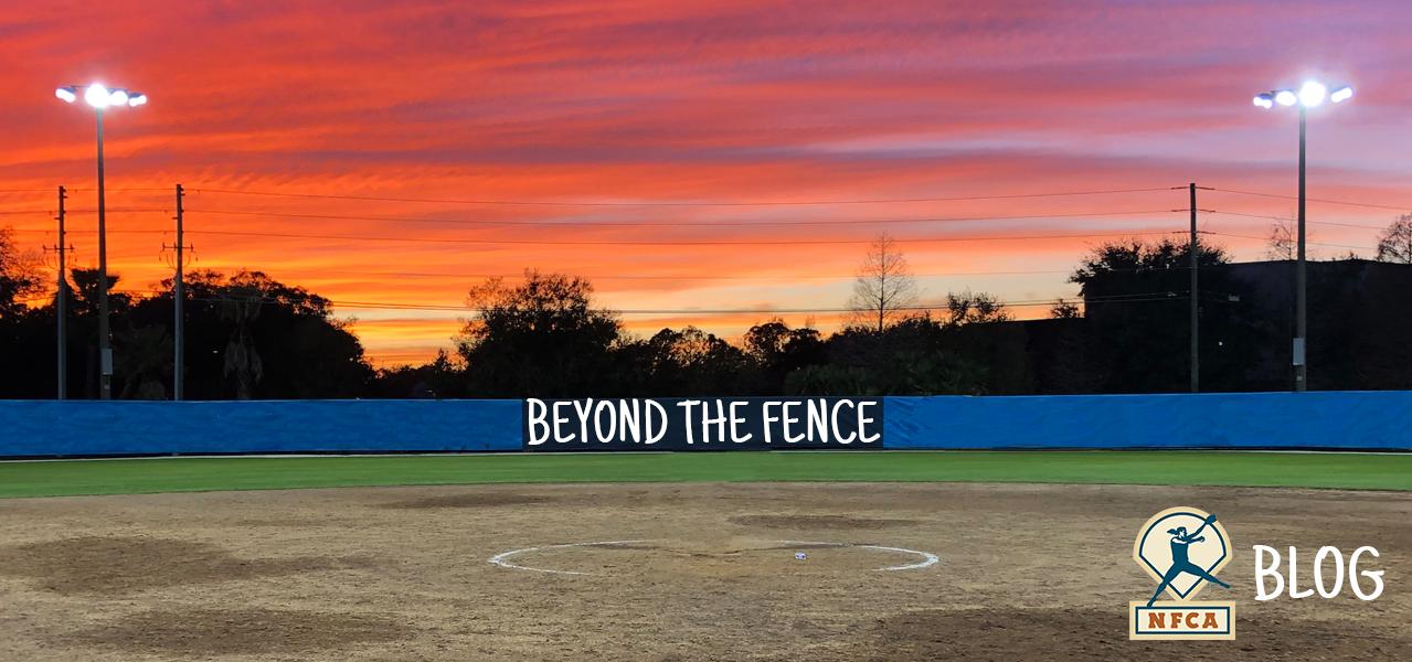 Beyond-The-Fence-Website-Header-Image-2